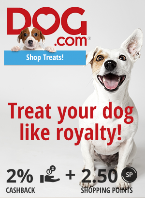Dog.com: Treat your Dog like royalty