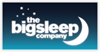 THE BIG SLEEP COMPANY